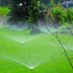 внедрение систем автоматического полива зелёных насаждений