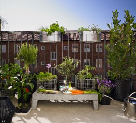 как озеленить и украсить балкон